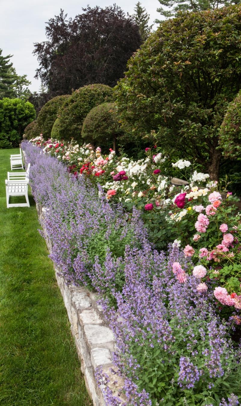 raised flowerbed